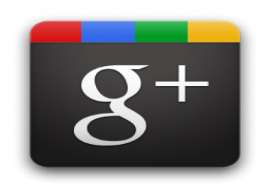 Provide 200 Mannually Verified Google +1 To Your  Page