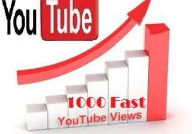deliver 1,000 YouTube Views within 1 day 
