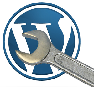 setup and fully customize your 1 wordpress blog as your instruction