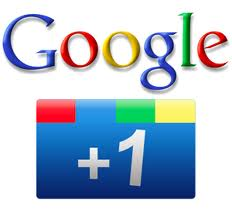 give you 600 google plus likes for
