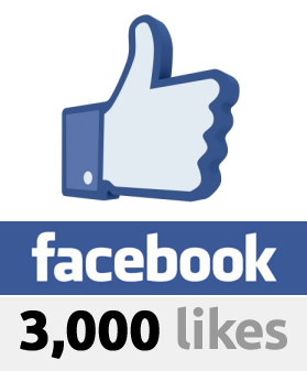 provide you 100% 3000 Guaranteed Real Working Facebook Likes within 48 hours