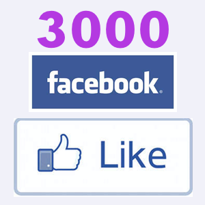 3000+ High Quality Facebook Likes, Fans to your Page in less than 24 hrs