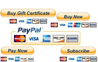 create Encrypt Code PayPal Button on Your Website