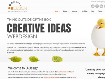 offer you U-Design wordpress theme with updates