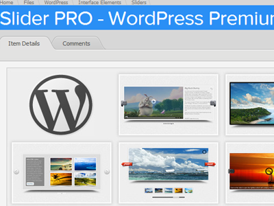 offer you Slider PRO - WordPress Premium Slider Plugin