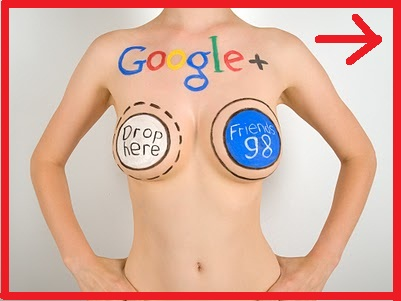 Give You 100+ Real Google Plus CIRCLES (Followers) to your page(No Bots)