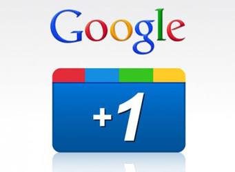 provide 150+ google +1 to your site only