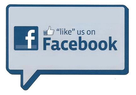 provide150 facebook like for your website