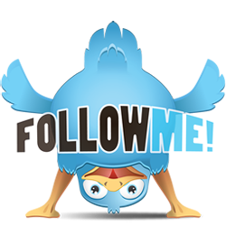 provide 1000+ twitter followers to any twitter account