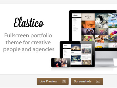Offer you Elastico Fullscreen Portfolio WP Theme