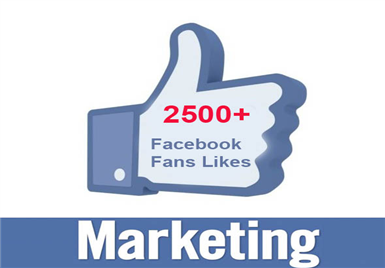 give you 100% verified 2500 Facebook Fan Page LIKE