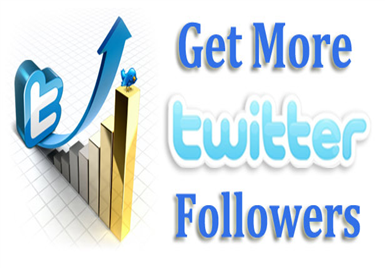 give You 28,000+ Twitter Followers USA + Canada High Quality w/ English Profiles Pic, Bio, Location Very FastNo Admin Access Required