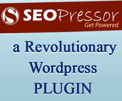 give you the wordpress SEO pressor plug in