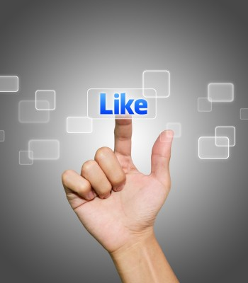 give  you 40 facebook likes all are real given by human
