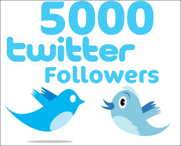 Increase 5000 Real Looking Follower on Your Twitter Profile within 24hrs