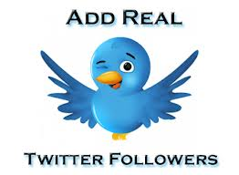 provide 32,000 REAL Human Twitter FOLLOWERS For Your Twitter Account In 24 Hours Without Your Password
