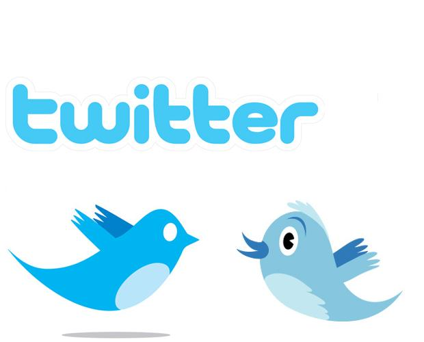 Create You 1000 Real Looking Twitter Accounts ID Password With Profiles Pic And Bio for Twitter BOT