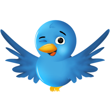 Get you guaranteed 85000+ Twitter Followers to your Twitter Account within 22 hrs