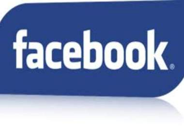 add 1000 likes to any comments on facebook, up to 5 different post 