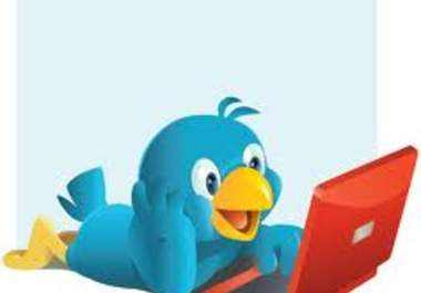 add more than 25,555+ Real TWITTER Followers to your Account