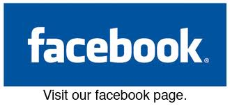 give you 300+ real fans like for face-book fan-page {100% real no bot like} only