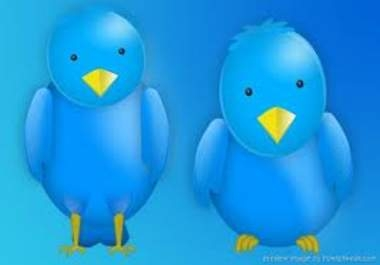 Get you 102k (102,000+) Guaranteed Twitter Followers in Maximum 2 days, Without Any Admin Access