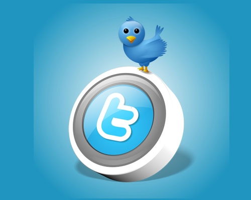 get you 10000+ twitter followers in your twitter account just few hours