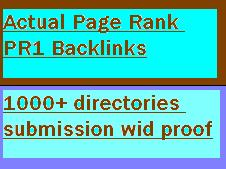 create 10 page pr1 links real google page rank pr1 with anchor keyword and submit ur sites to 1000+ directories submission with proof