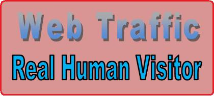 Deliver 12000 ++ Traffic Real Human Visitors to Your Website.