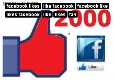 send 2000+ Facebook Likes, Fans to your Fb Page, Website, Photo or status in under 96 hours