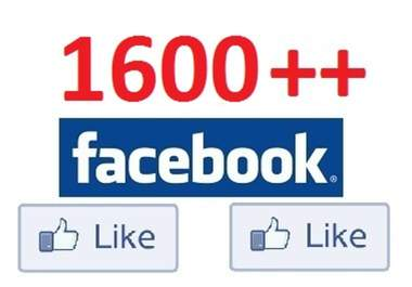 add 2000 High Quality Facebook Likes, Fans to your Page in under 24 hrs