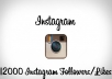 get you 12000 instagram followers/likes