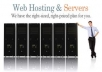 sell FULL Web Hosting Service 1 Year