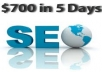I will Give you the Method to make 700$ in 5 days including video guide, wordpress templates..
