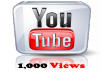 I Give You 1000+ YouTube Views Within 24 Hours Without Harming Your YouTube Video or Account