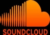 provide you with *600* SoundCloud Followers without admin access