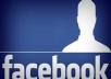 guaranteed 300 worldwide FACEBOOK Fans / Likes to your facebook fanpage for