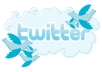 provide 2500 real twitter follower no password required within 15 hour