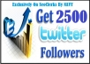 Provide You 2500 Real And Active Twitter Follower Only