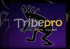 promote 2 links thru TribePro, each one gets shared syndicated 1,237+ times!@@!