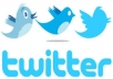give you 100 real and permanent twitter Followers for