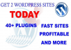 securely install your new 2 WORDPRESS sites plus one site extra