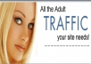 1,000+ Real Targeted Adult Website Visitors