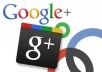 give you Manually 200+ Google+1 real human vote(48 hours) on your site