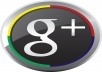 i will give you 100++ REAL Google circle followers to your Google+ page in 48 hours