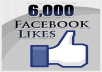 add 6060+ REAL  Facebook Likes to anyFan Page