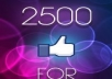 give you 2,500 Real look [PERMANENT] facebook likes to your fan page in 24 hours