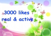 add 3000 [Real ] facebook likes to your facebook fan page within 24 hours