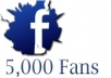 Get You FAST 5000 Real Facebook Fanpage Like Or Facebook Follower
