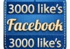 add 3000 [Real and Stay] facebook likes to your facebook fan page within 24 hours